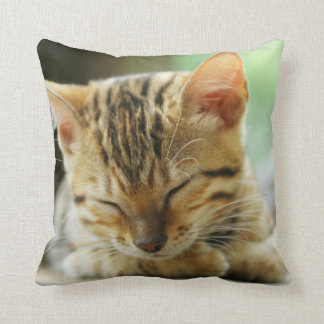 Sleeping Little Baby Kitty Throw Pillow