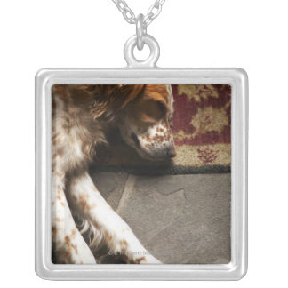 Sleeping Llewelyn setter Silver Plated Necklace