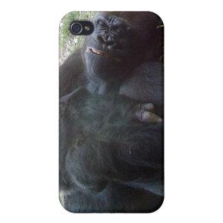 Sleeping Lowland Gorilla Kansas City Zoo iPhone 4/4S Case
