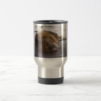 Sleeping male lion head view photograph travel mug