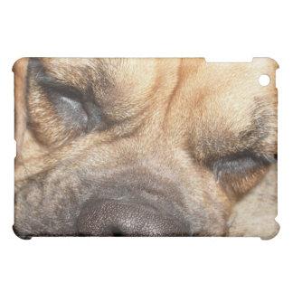 Sleeping Mastiff  iPad Case