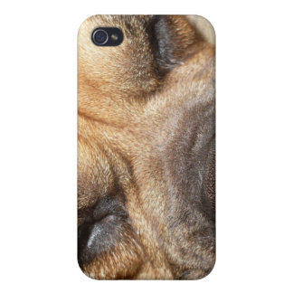 Sleeping Mastiff  iPhone 4 Case
