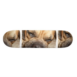 Sleeping Mastiff Skateboard
