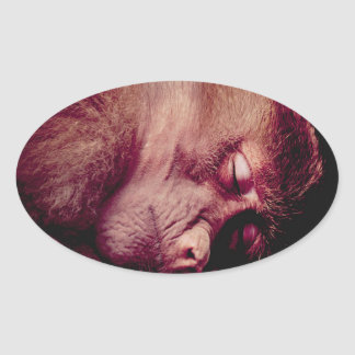 Sleeping monkey oval sticker