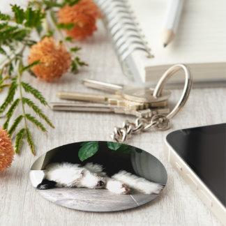 Sleeping OES Puppy Keychain