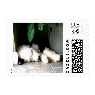 Sleeping OES Puppy Postage Stamp