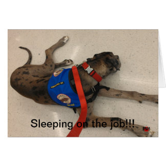 Sleeping on the job card