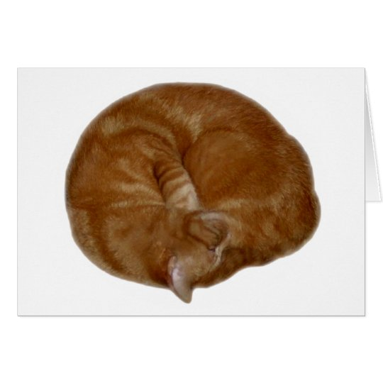 Sleeping Orange Cat Card