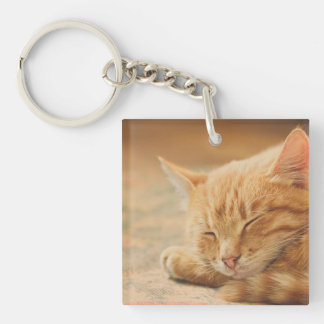 Sleeping Orange Tabby Cat Key Chain