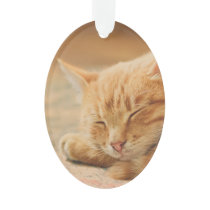 Sleeping Orange Tabby Cat Ornament