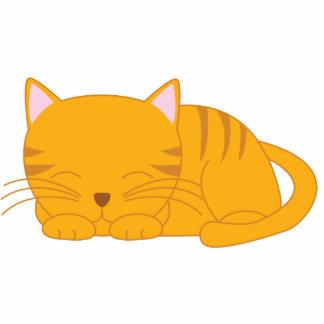 Sleeping Orange Tabby Cat Photo Cut Out
