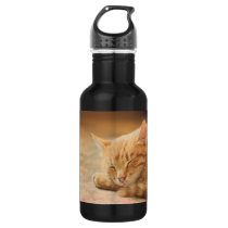 Sleeping Orange Tabby Cat Stainless Steel Water Bottle