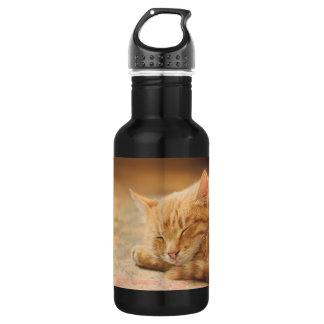 Sleeping Orange Tabby Cat Stainless Steel Water Bottle