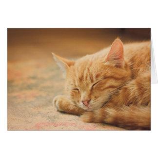 Sleeping Orange Tabby Cat Stationery Note Card