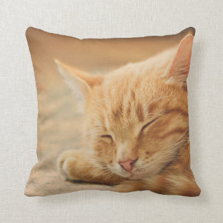 Sleeping Orange Tabby Cat Throw Pillow
