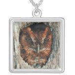 Sleeping Owl in a Tree Silver Plated Necklace