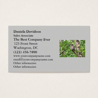 Sleeping Owl in the Wild Business Card
