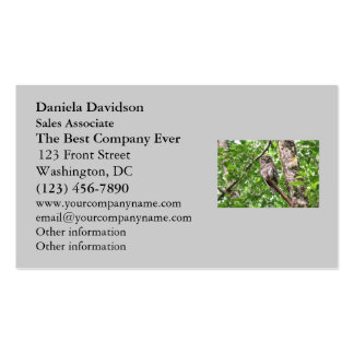 Sleeping Owl in the Wild Double-Sided Standard Business Cards (Pack Of 100)