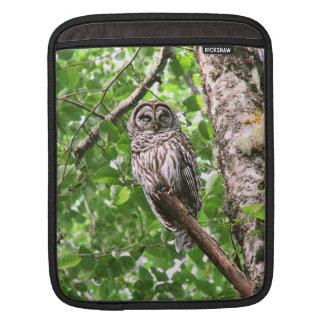 Sleeping Owl in the Wild iPad Sleeve