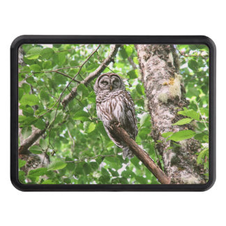 Sleeping Owl in the Wild Tow Hitch Cover