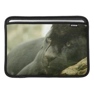 """Sleeping Panther 11"""" MacBook Sleeve"""