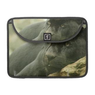 """Sleeping Panther 13"""" MacBook Sleeve Sleeves For MacBook Pro"""
