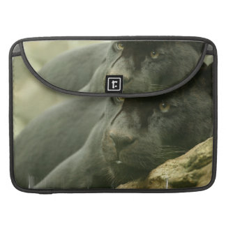 """Sleeping Panther 15"""" MacBook Sleeve Sleeve For MacBooks"""