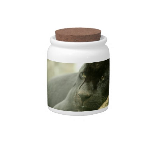 Sleeping Panther Candy Jar