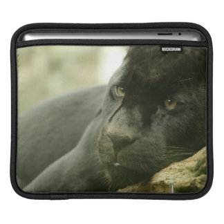 Sleeping Panther iPad Sleeve