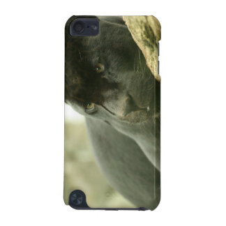 Sleeping Panther iTouch Case iPod Touch (5th Generation) Cover