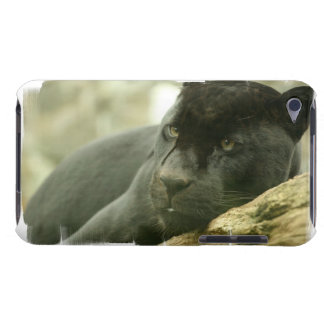 Sleeping Panther  iTouch Case Barely There iPod Covers
