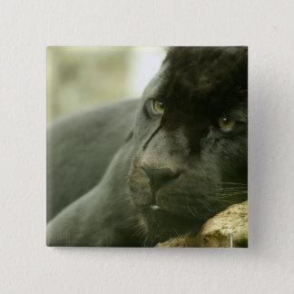 Sleeping Panther Pin
