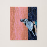 sleeping pied pigeon coral wall blue river invert jigsaw puzzles