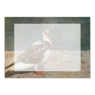 Sleeping Pied Pigeon Grunged look 5x7 Paper Invitation Card