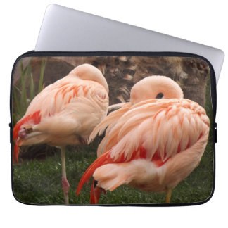 Sleeping Pink Flamingos Computer Sleeve