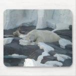 Sleeping Polar Bear Mouse Pad