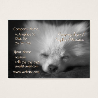 Sleeping Pomeranian business card template