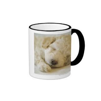 Sleeping Poodle puppy 2 Mugs