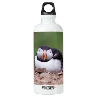 Sleeping Puffin Aluminum Water Bottle