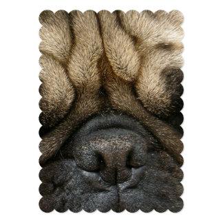 Sleeping Pug Card