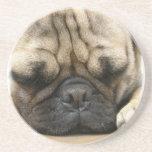 Sleeping Pug Coasters