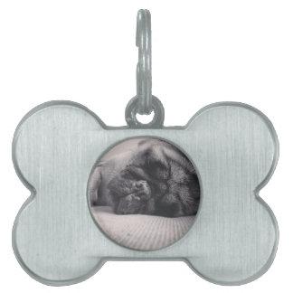 Sleeping Pug Pet Name Tags