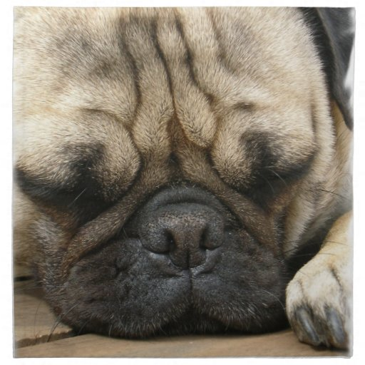 Sleeping Pug Set of Four Napkins