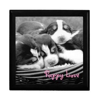 Sleeping Puppies Basket Gift Box