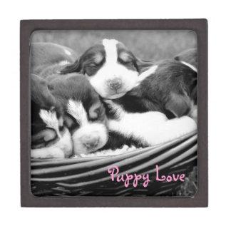 Sleeping Puppies Basket Premium Keepsake Box