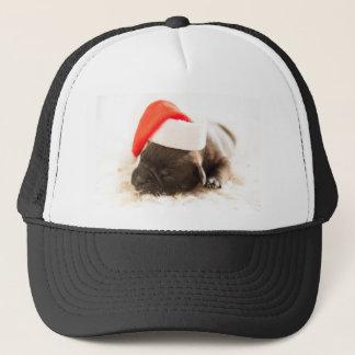 Sleeping Puppy Dog in Santa Christmas Hat