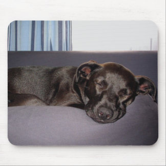 Sleeping Puppy Mouse Pads