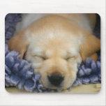 Sleeping Puppy Mousepad
