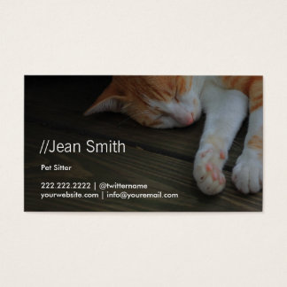 Sleeping Pussy Cat Pet Sitting Business Card