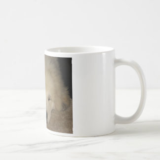Sleeping Pyr Classic White Coffee Mug